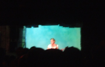 Cathedral Heat Kristin Hersh S Paradoxical Undressing Live Manic